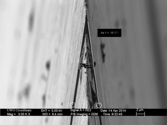 bevel_angle_x_measured